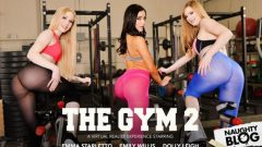 Naughty America VR – Dolly Leigh, Emily Willis & Emma Starletto